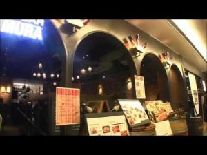 Read more about the article 札幌 肉の割烹 田村 大通BISSE店