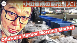 Read more about the article Amazing Odawara Harbor Morning Market 小田原・港の朝市に潜入!