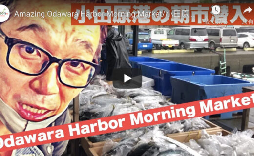 amazing_odawara_horbar_morning_market
